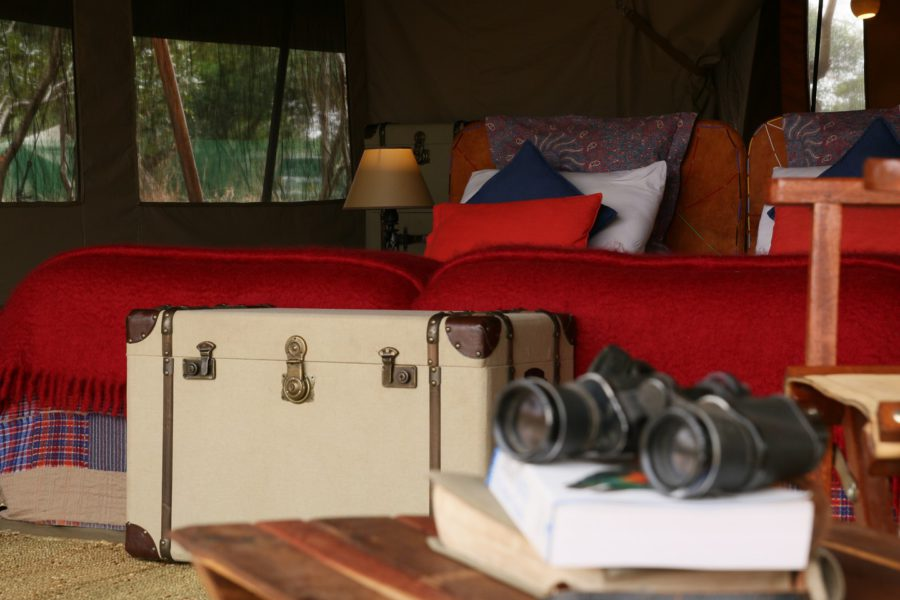 Los imprescindibles en tu maleta de safari