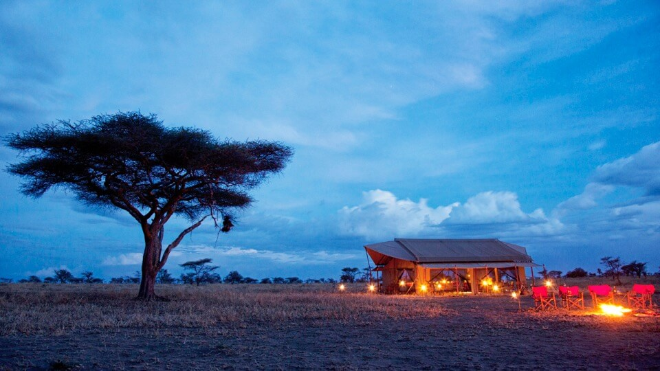 Safari camps de Kenia y Tanzania- Pumzika-Luxury-Safari-Camp